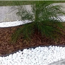 Casca De Pinus Forração De Jardim - 40 Litros - 7kg