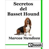Basset Hound Adiestramiento Libro Cachorro Adulto Crianza