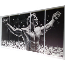 Arnold Schwarzenegger / Cuadro De 5 Piezas (1.58m X80cm)