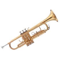 Trompeta Stagg Ws Tr215s Si Bemol Boquilla Estuche Envios