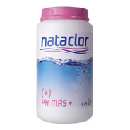 Regulador Elevador Ph Mas 2 Kg Nataclor