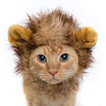 Peluca Disfraz Melena Tipo Leon Para Gatos Perros Mini