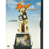 Dvd Spot Um Cão Da Pesada - David Arquette - Snapcase