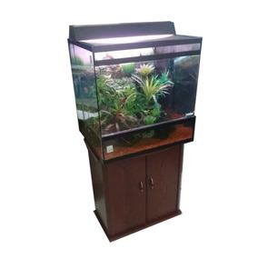 Terrário Aquaterrário P/ Répteis Iguanas Pogonas Tartarugas