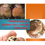 Manual Para Cria Y Producción De Codornices
