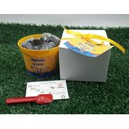 Mini Kit Plantio Tag Personalizado Girassol Combo C/10