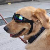 Lentes De Sol Para Perro Gafas, Pack 2 Unidades.