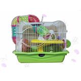 Jaula Hamster 2 Pisos Full Equipo, Variedad Colores Pethome