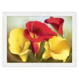 Quadro Floral 78x58 Com Moldura - Anturio Vermelho Amarelo