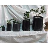 Bolsas Macetas Plantas Plasticas Grandes Clase A