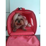 Bolsa De Transporte Pet Cães Luxo Avião .porte Pequeno.
