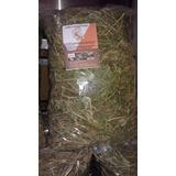 Heno De Alfalfa 100% Natural