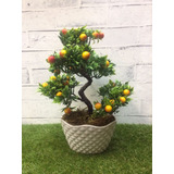 Bonsai Realista Artificiais Mini Frutas - Vaso Acrílico 006