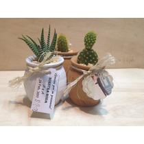 Mini Cactus En Jarro De Barro Decorados Para Recuerdos