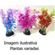 Kit Plantas Plásticas Enfeite Aquário 10cm Betta Collor 3uni