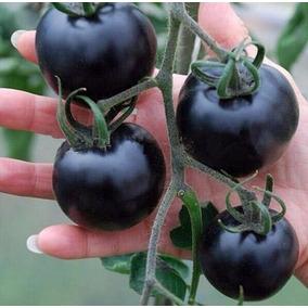 Sementes De Tomate Preto 25 Sementes Super Promoção