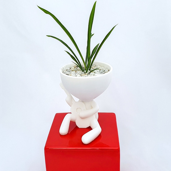 Macetas Cactus Suculentas 3decofriendly Robert Plant X Unid.