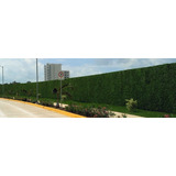 Muro Verde, Follaje Artificial Sintentico 25 X 25 Cm Pared