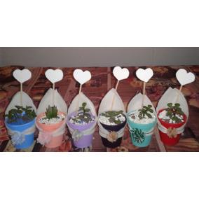 Suculentas Y Cactus. Macetas Plasticas A $14.