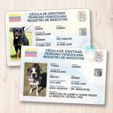 Cédulas O Tarjetas De Identificación Para Tu Mascota
