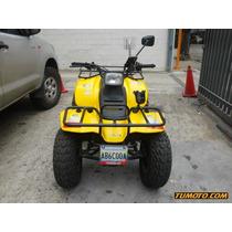 Suzuki Quad Runner 126 Cc - 250 Cc