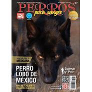 Revista Perros Pura Sangre. Perro Lobo De México. Julio 2018