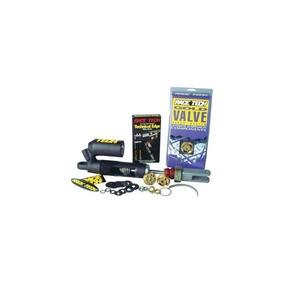 Kit De Amortiguación Race Tech Gold Valve - Tipo 3 / 46mm Sm