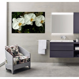 Cuadro Orquideas Blancas Flor Life Decora Tu Baño Vida 30x45