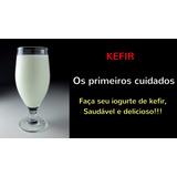 Kefir De Leite - Bichinho Do Iogurte - Lactobacilos Vivos