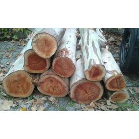 rodajas de tronco rodajas de madera eucalipto colorado