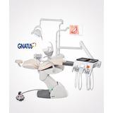Unidad Dental Gnatus G8 F