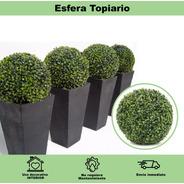 Esferas Topiario Booxwood Greenline Envio Gratis Tamaños