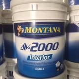 Av 2000 Montana, Cuñete Pintura Blanca, Clase A, Interior