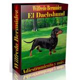 Libro Electrónico El Daschshund Adiestramiento Y Más.