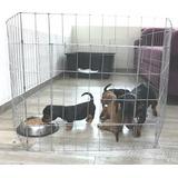 Corral Para Perro 60cm Alto 8 Paneles Oferta
