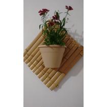 Vaso De Parede Com Suporte De Bambu Tratado