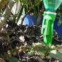 12 Gotejadores Para Planta E Flor - Adaptavel Em Garrafa Pet