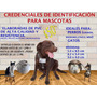 Credenciales De Identificación Para Mascotas