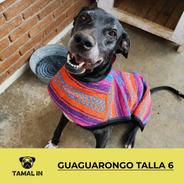 Guaguarongo Sencillo - Talla 6