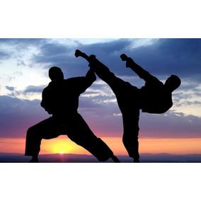 apostila de artes marciais gratis