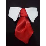 Corbata Para Mascota Perro Gato Moño Elegante