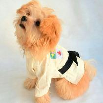 Fantasia Kimono Para Cães