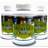 Combo 3 Potes Moringa Oleifera 600 Extrato 60caps