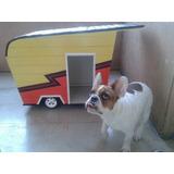Bulldog Francés Cucha De Diseño Casa Rodante