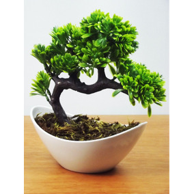 Bonsai Vaso Branco Mini Árvores Artificial Plantas Arranjos