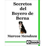 Boyero De Berna Libro Entrenamiento Canino Cachorro Adulto