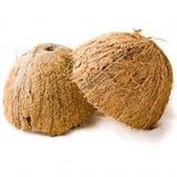 Casca De Coco Para Artesanato Kit 50 Metades Frete Gratis