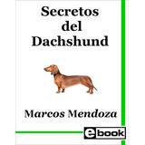 Dachshund Salchicha - Libro Adiestramiento Cachorro Adulto