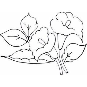 Kit 5 Tecidos Algodão Cru Riscado - Agulha Mágica - Flores