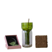 Kit Little Plant 15, Maceta Autorregante